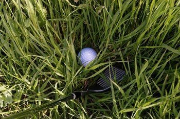 golf ball sat down in grass